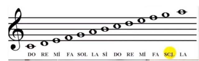 Müzik defterine Nota Nasıl Yazılır